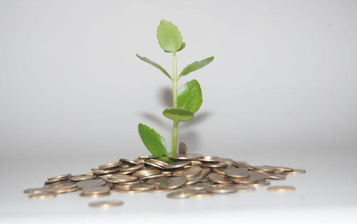 vantagens microfranquia imagem dinheiro nascendo