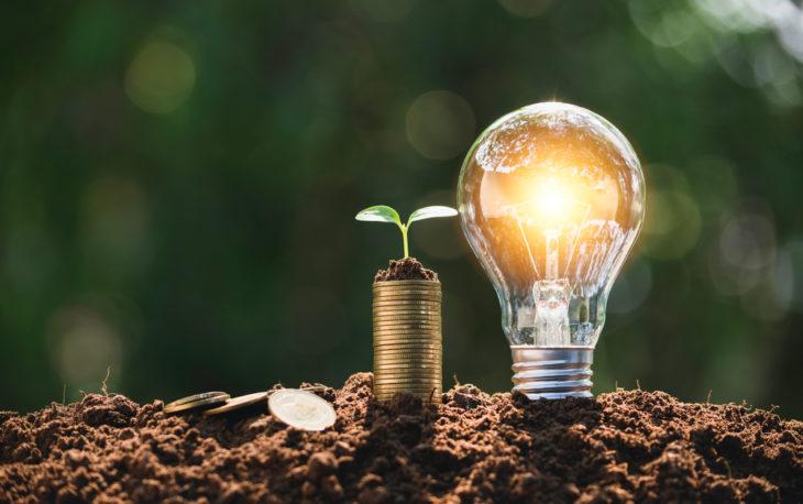 moedas com uma plantinha em cima e uma lampada acessa ao lado