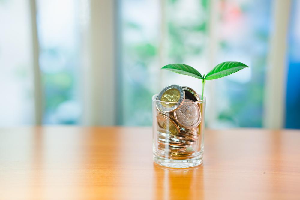Vemos, sobre uma mesa, um pequeno copo com medas dentro enquanto uma planta nasce desse montinho (imagem ilustrativa). Imagem ilustrativa texto franquias até 5 mil.