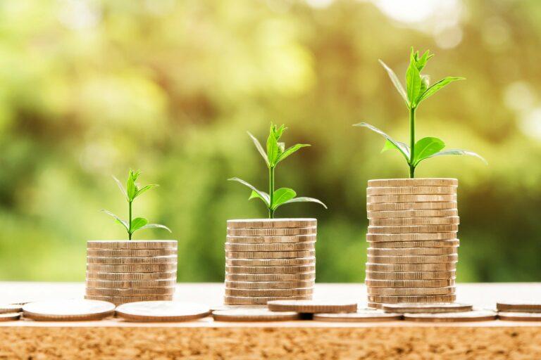 Imagem de pilhas de moedas com uma planta em cima. Imagem ilustrativa texto franquias ideais para quem tem até 35 anos.