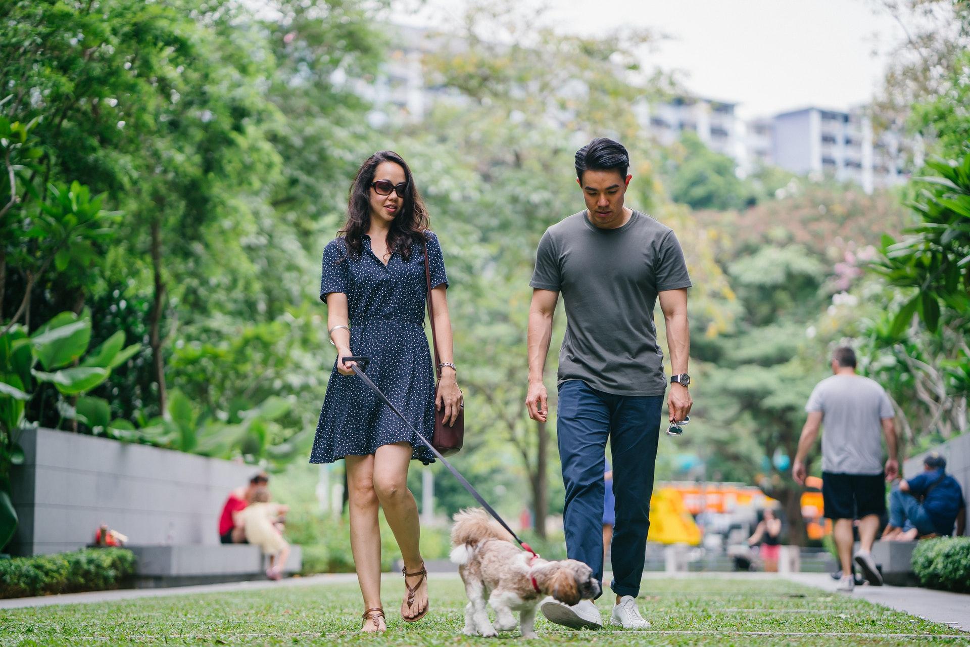 Vemos duas pessoas caminhando em um parque com seu cachorro de estimação (imagem ilustrativa). Texto: franquia kopenhagen.