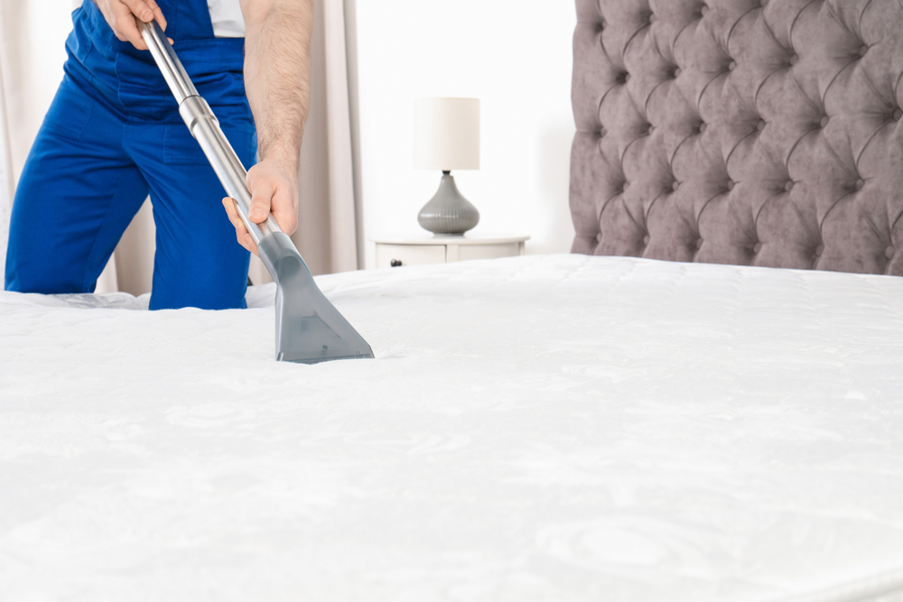 Vemos um profissional realizando a limpeza de um colchão (imagem ilustrativa).
